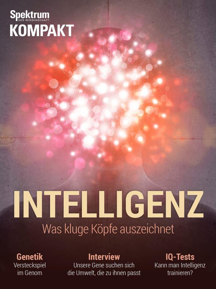 Intelligenz - Was kluge Köpfe auszeichnet