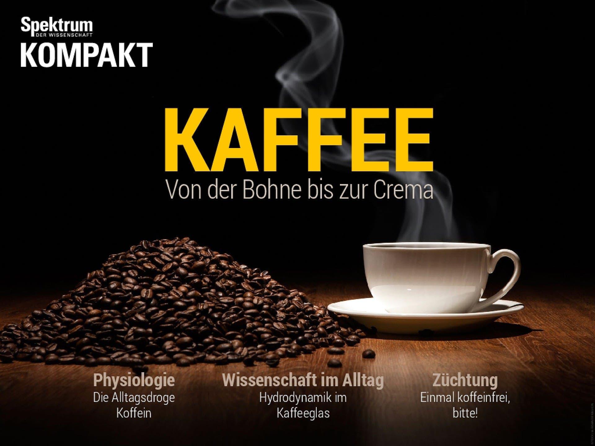 Kaffee - Von der Bohne bis zur Crema