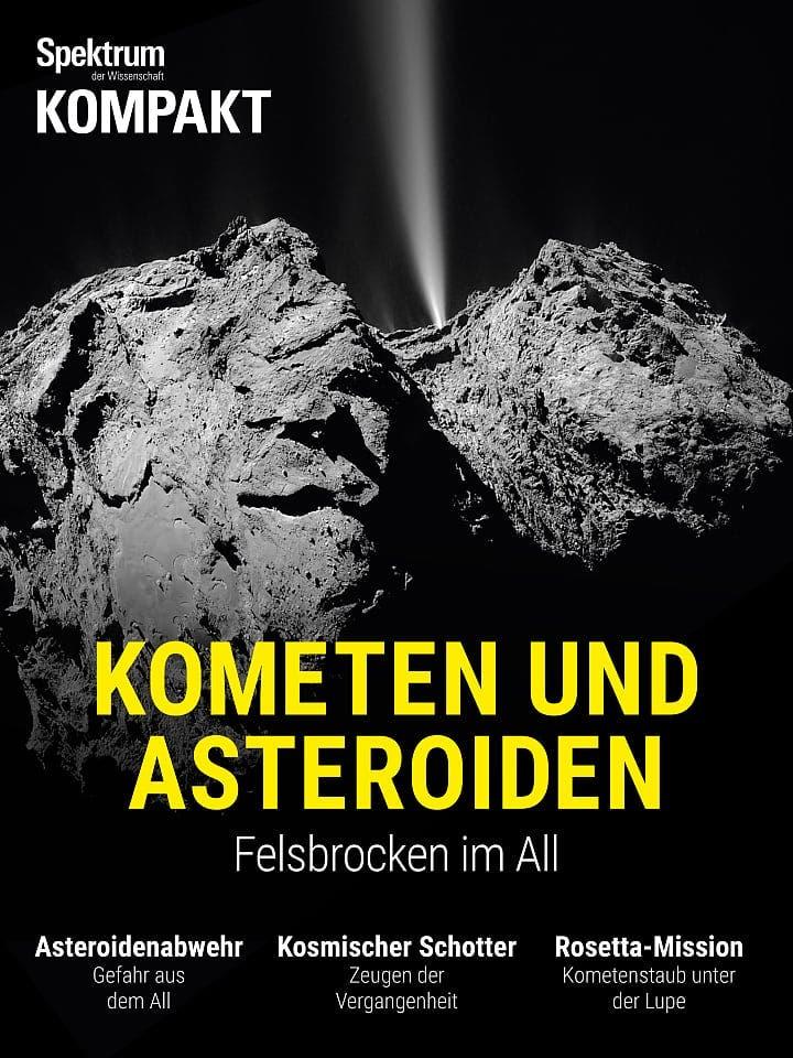 Spektrum Kompakt:  Kometen und Asteroiden – Felsbrocken im All