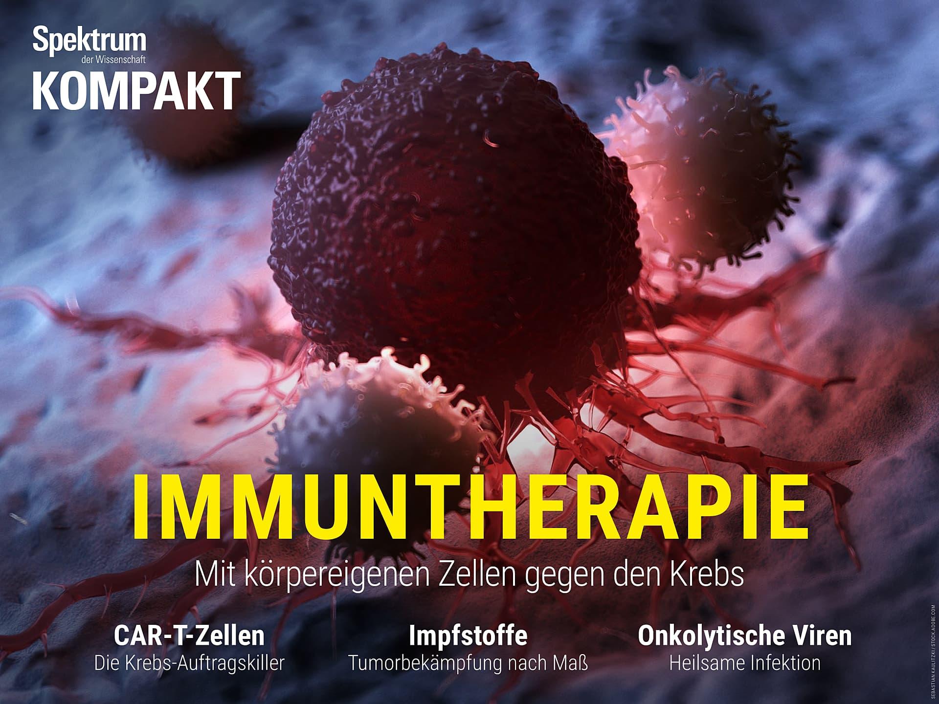 Immuntherapie - Mit körpereigenen Zellen gegen den Krebs