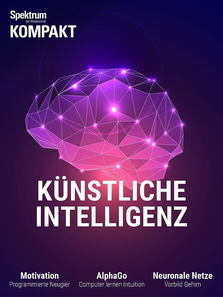Spektrum Kompakt:  Künstliche Intelligenz – Wie Maschinen lernen lernen