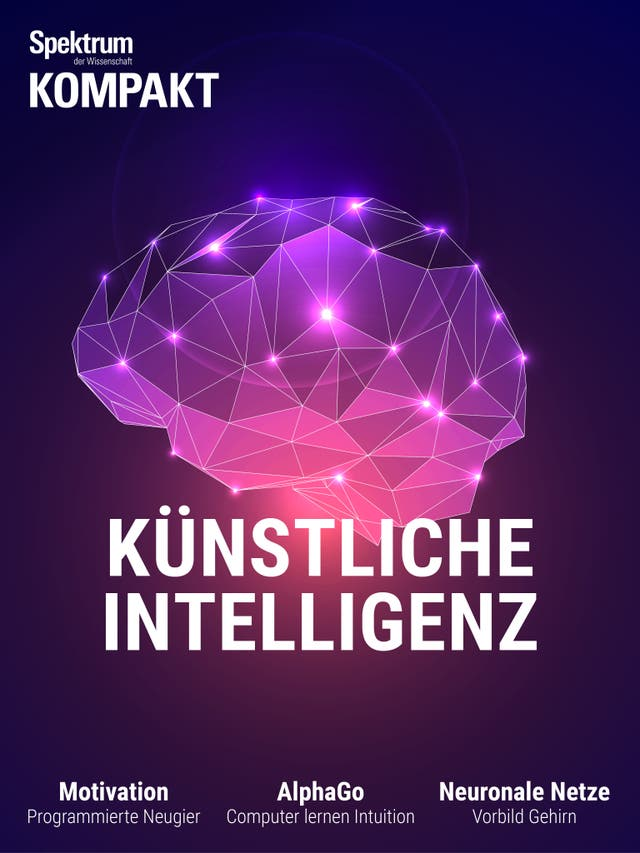Künstliche Intelligenz - Wie Maschinen lernen lernen