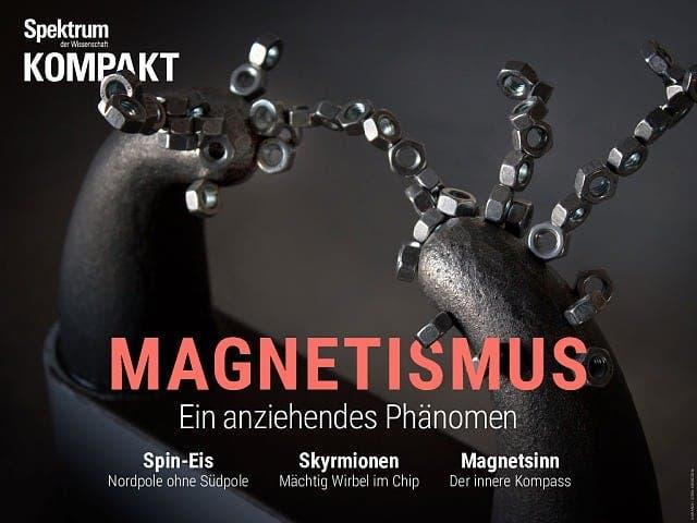 Spektrum Kompakt:  Magnetismus – Ein anziehendes Phänomen