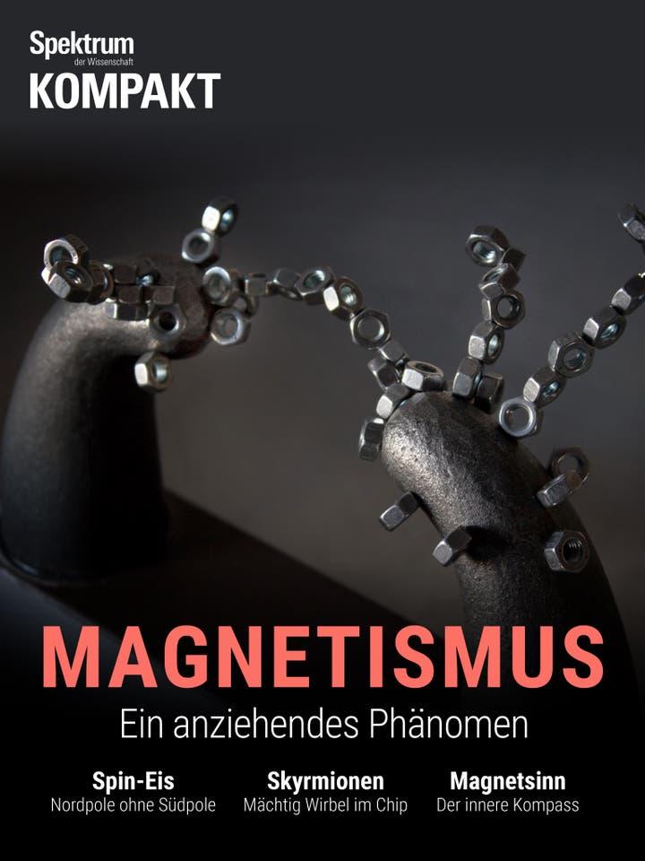 Magnetismus - Ein anziehendes Phänomen