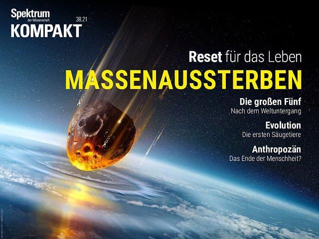 Spektrum Kompakt:  Massenaussterben – Reset für das Leben