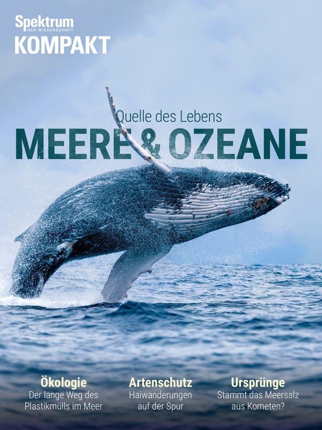 Meere und Ozeane - Quelle des Lebens