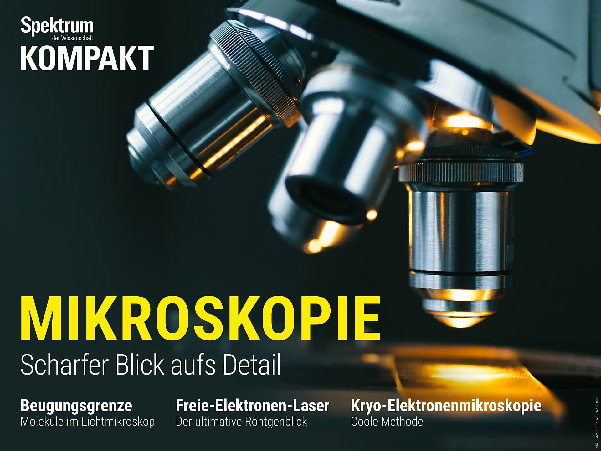 Mikroskopie - Scharfer Blick aufs Detail