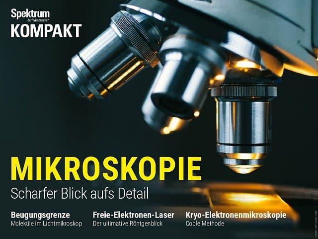 Spektrum Kompakt:  Mikroskopie – Scharfer Blick aufs Detail