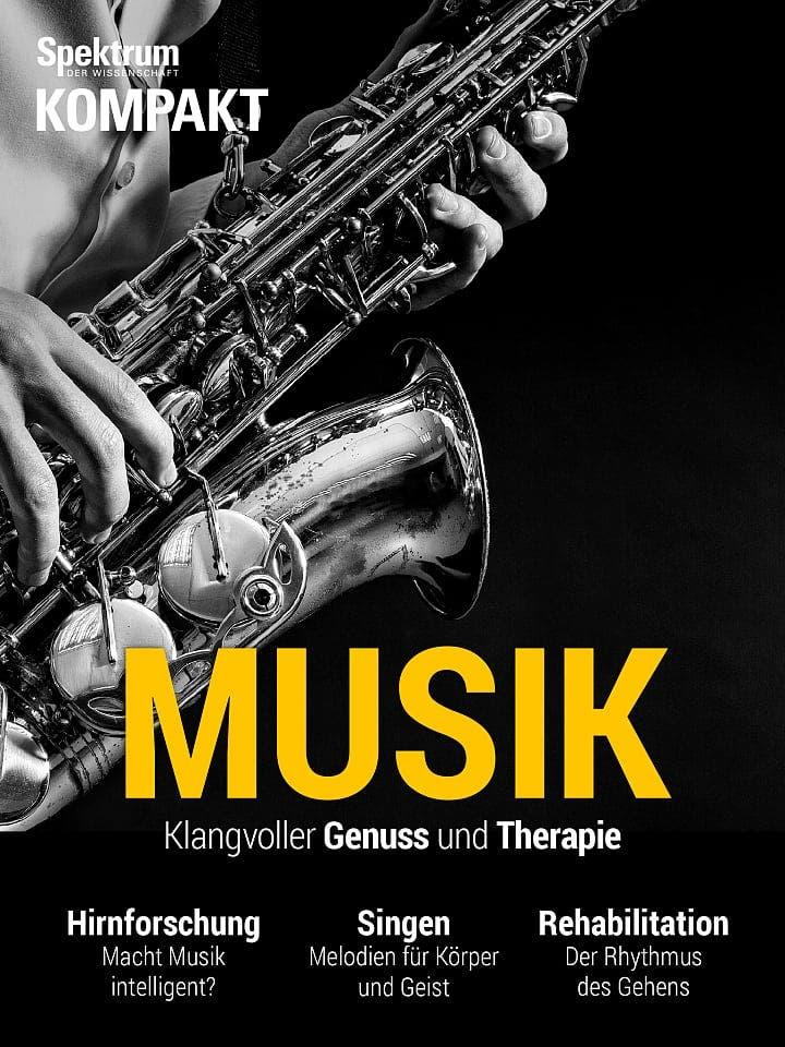 Spektrum Kompakt:  Musik – Klangvoller Genuss und Therapie