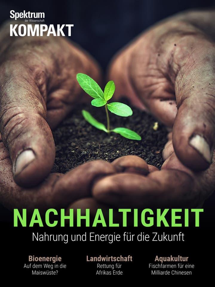 Nachhaltigkeit - Nahrung und Energie für die Zukunft