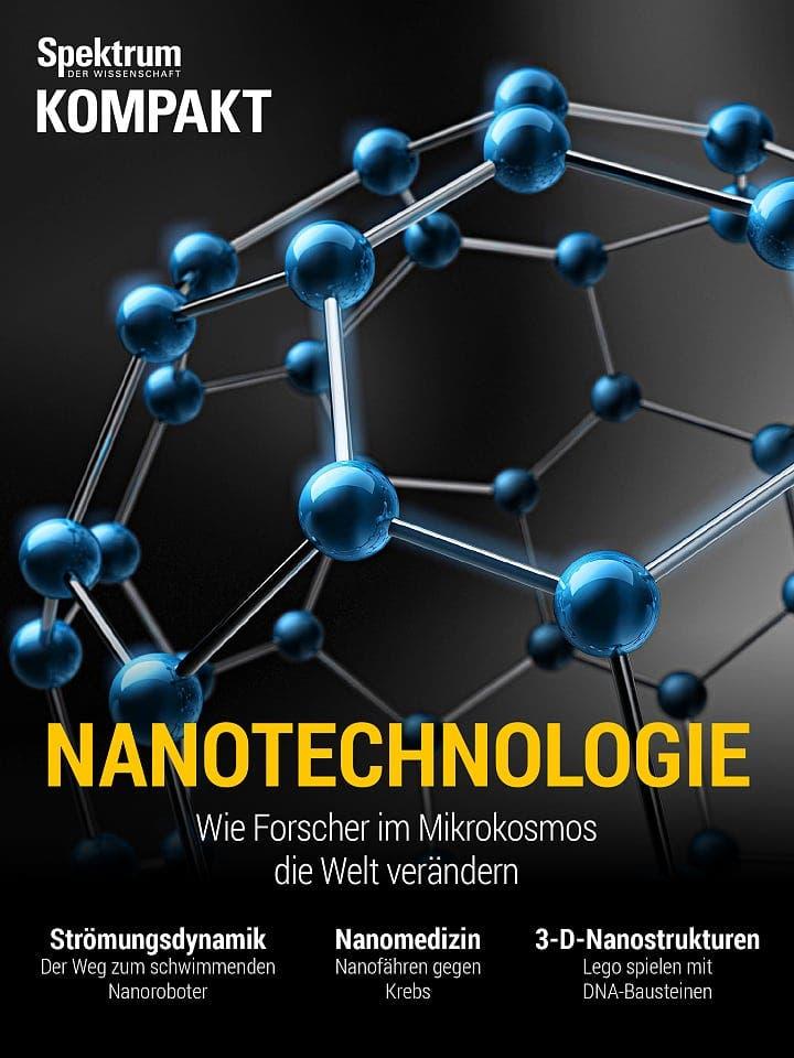 Spektrum Kompakt:  Nanotechnologie – Wie Forscher im Mikrokosmos die Welt verändern
