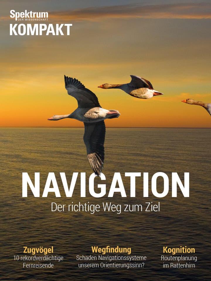 Navigation - Der richtige Weg zum Ziel