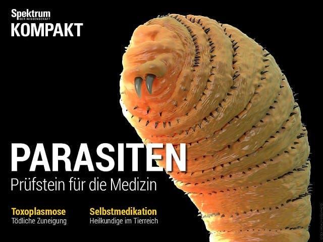 Parasiten - Prüfstein für die Medizin