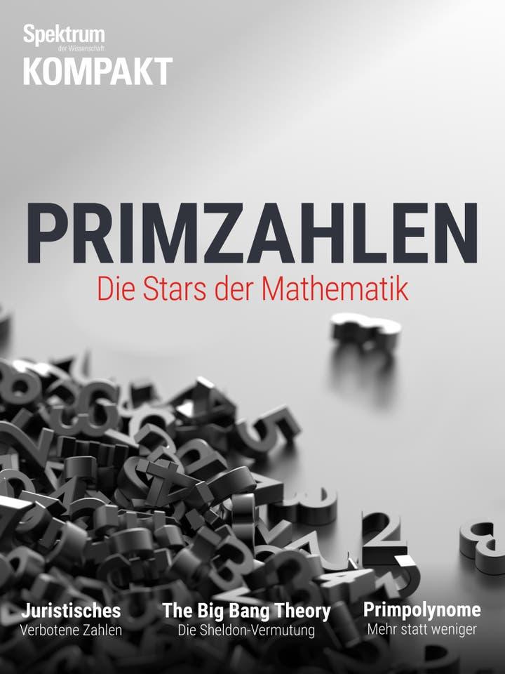 Primzahlen - Die Stars der Mathematik