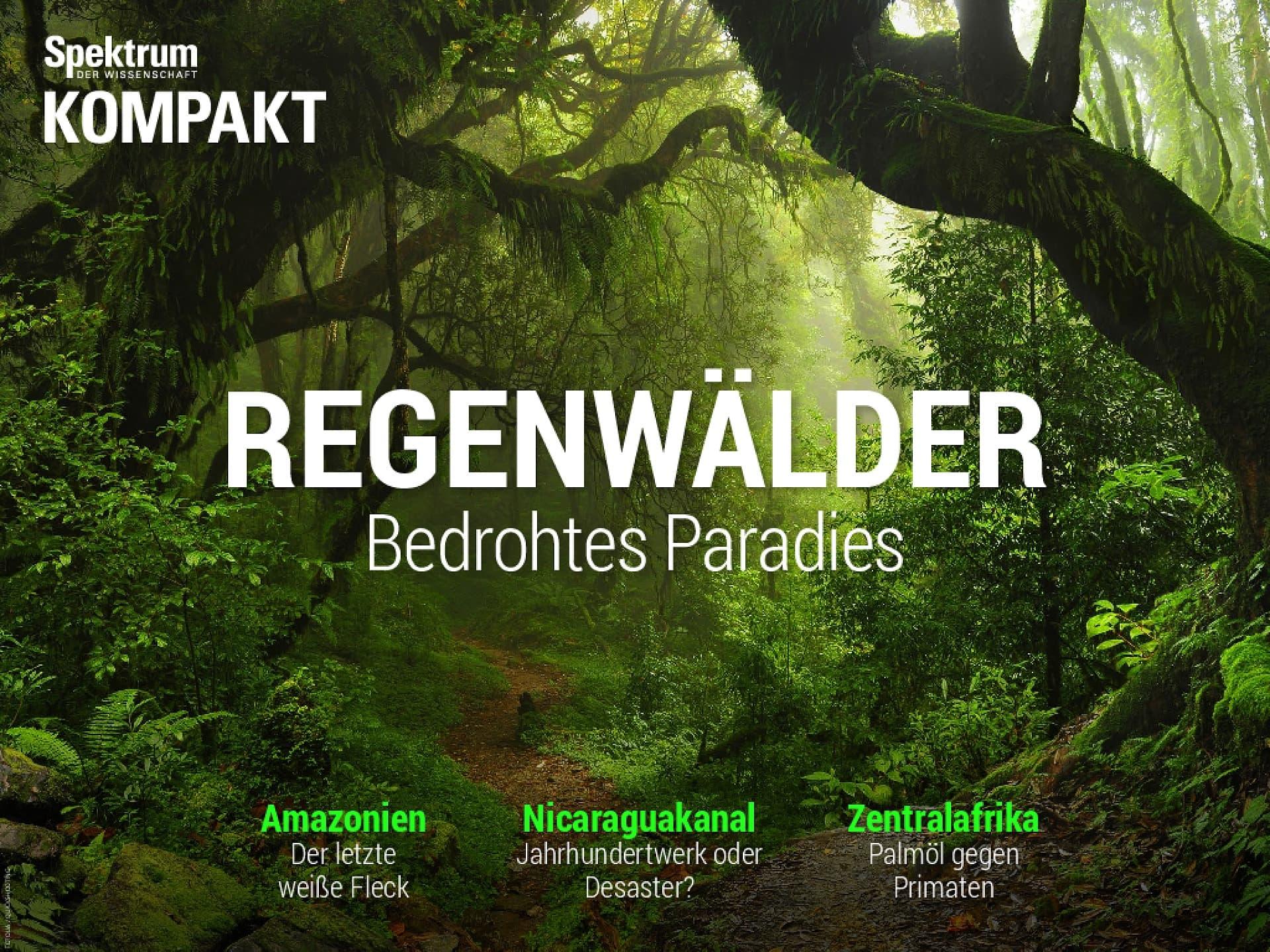 Regenwälder - Bedrohtes Paradies