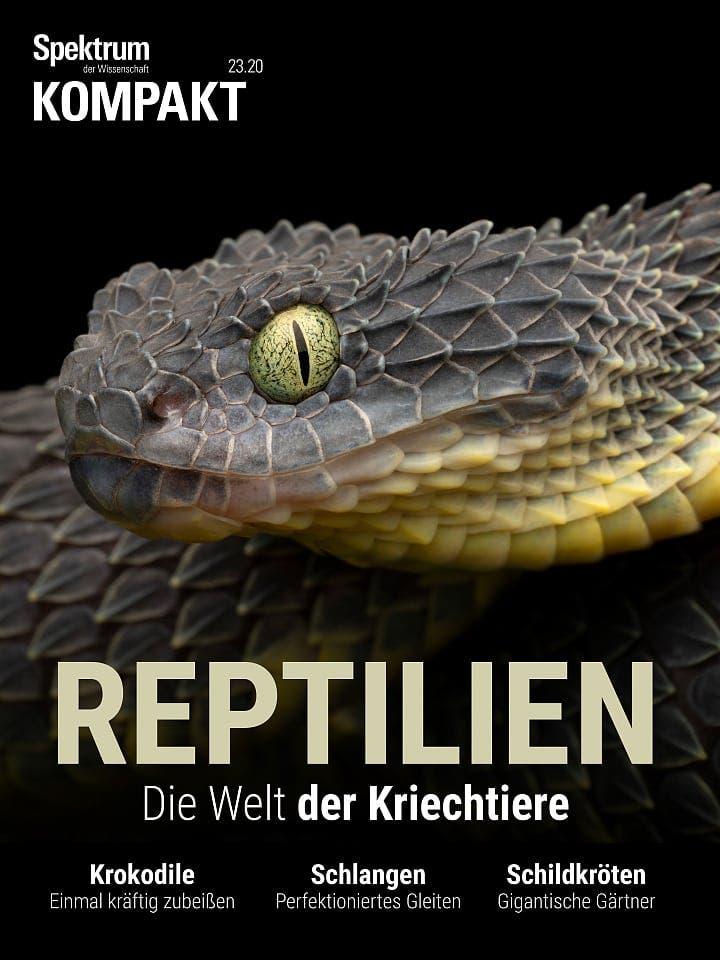Spektrum Kompakt:  Reptilien – Die Welt der Kriechtiere