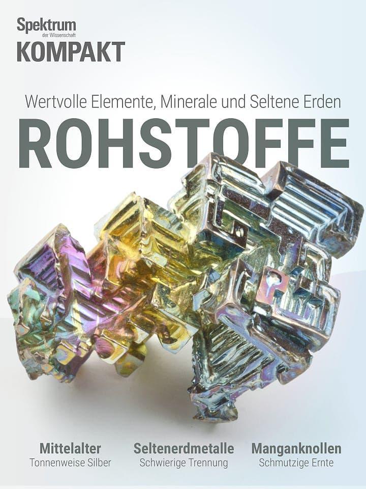 Spektrum Kompakt:  Rohstoffe – Wertvolle Elemente, Minerale und Seltene Erden