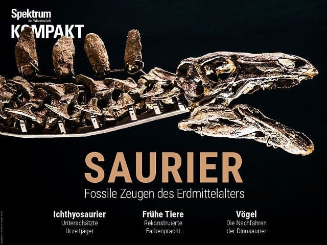 Spektrum Kompakt:  Saurier – Fossile Zeugen des Erdmittelalters