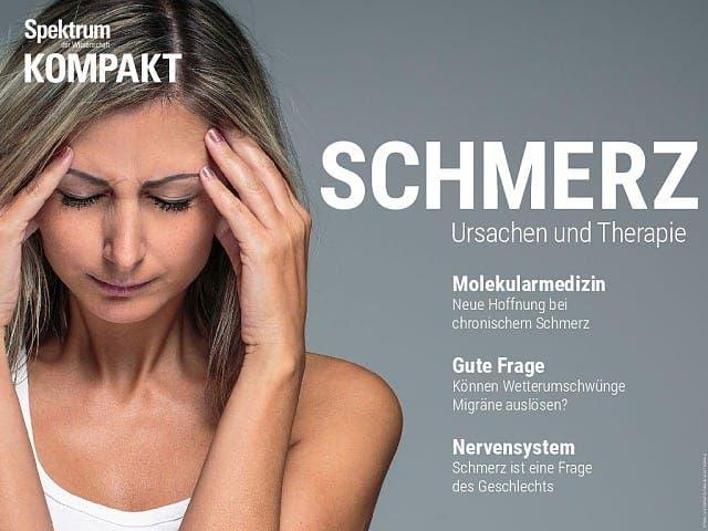 Spektrum Kompakt:  Schmerz – Ursachen und Therapie
