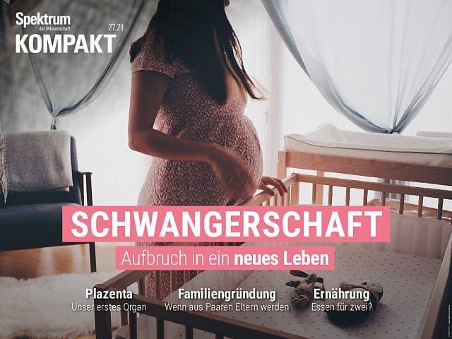 Spektrum Kompakt:  Schwangerschaft – Aufbruch in ein neues Leben