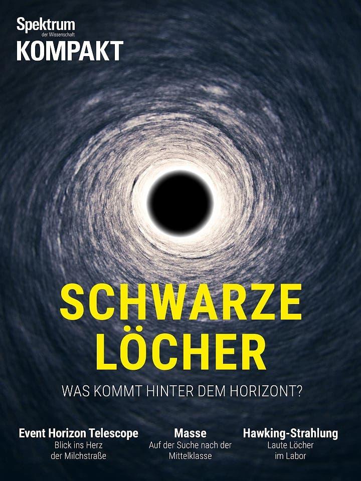 Spektrum Kompakt:  Schwarze Löcher – Was kommt hinter dem Horizont?