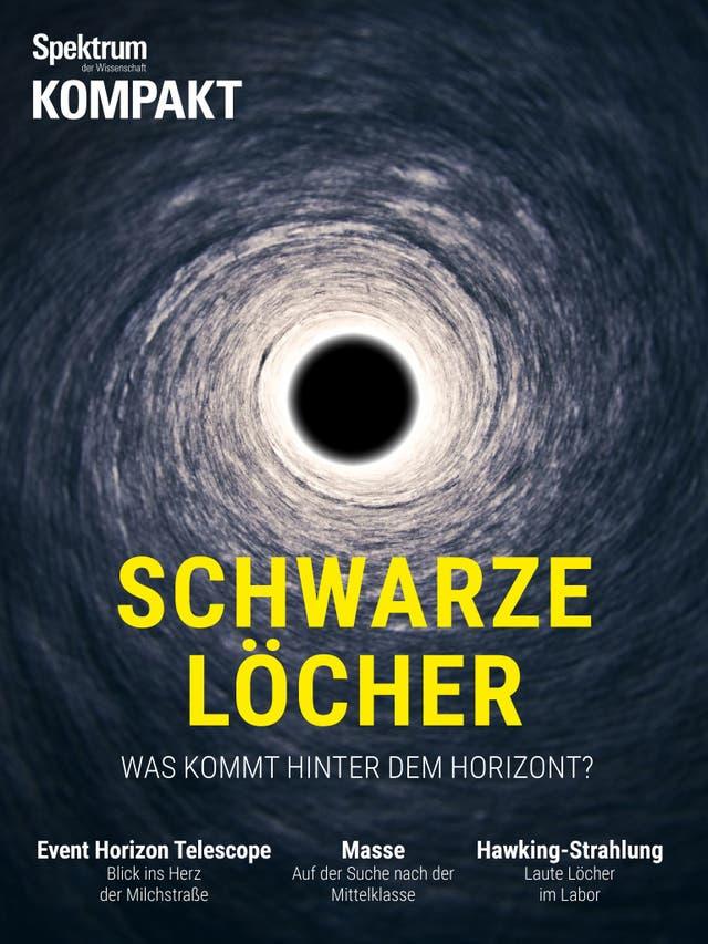 Schwarze Löcher - Was kommt hinter dem Horizont?