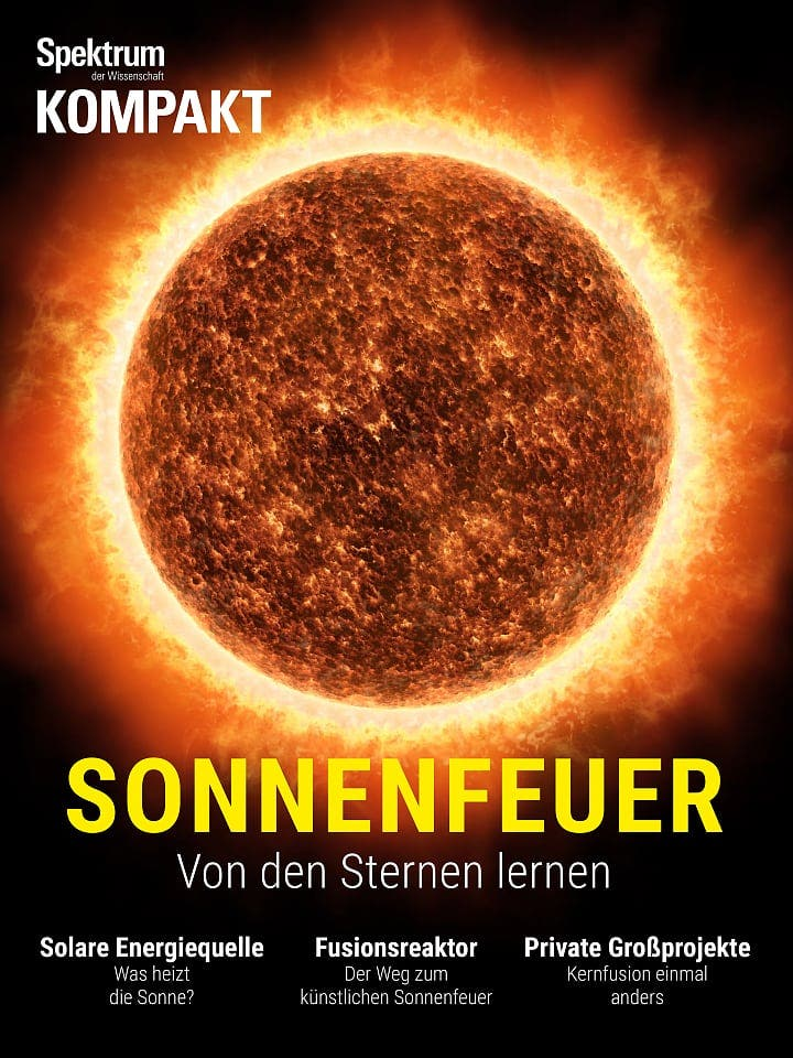 Spektrum Kompakt:  Sonnenfeuer – Von den Sternen lernen
