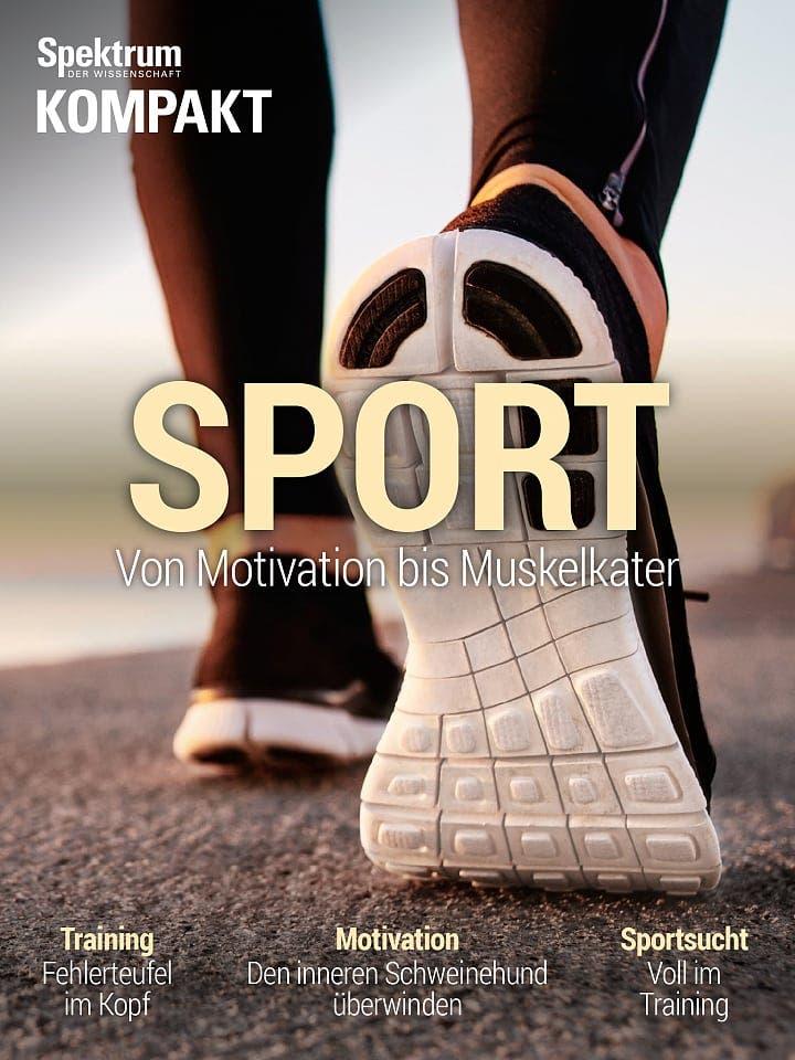 Spektrum Kompakt:  Sport – Von Motivation bis Muskelkater