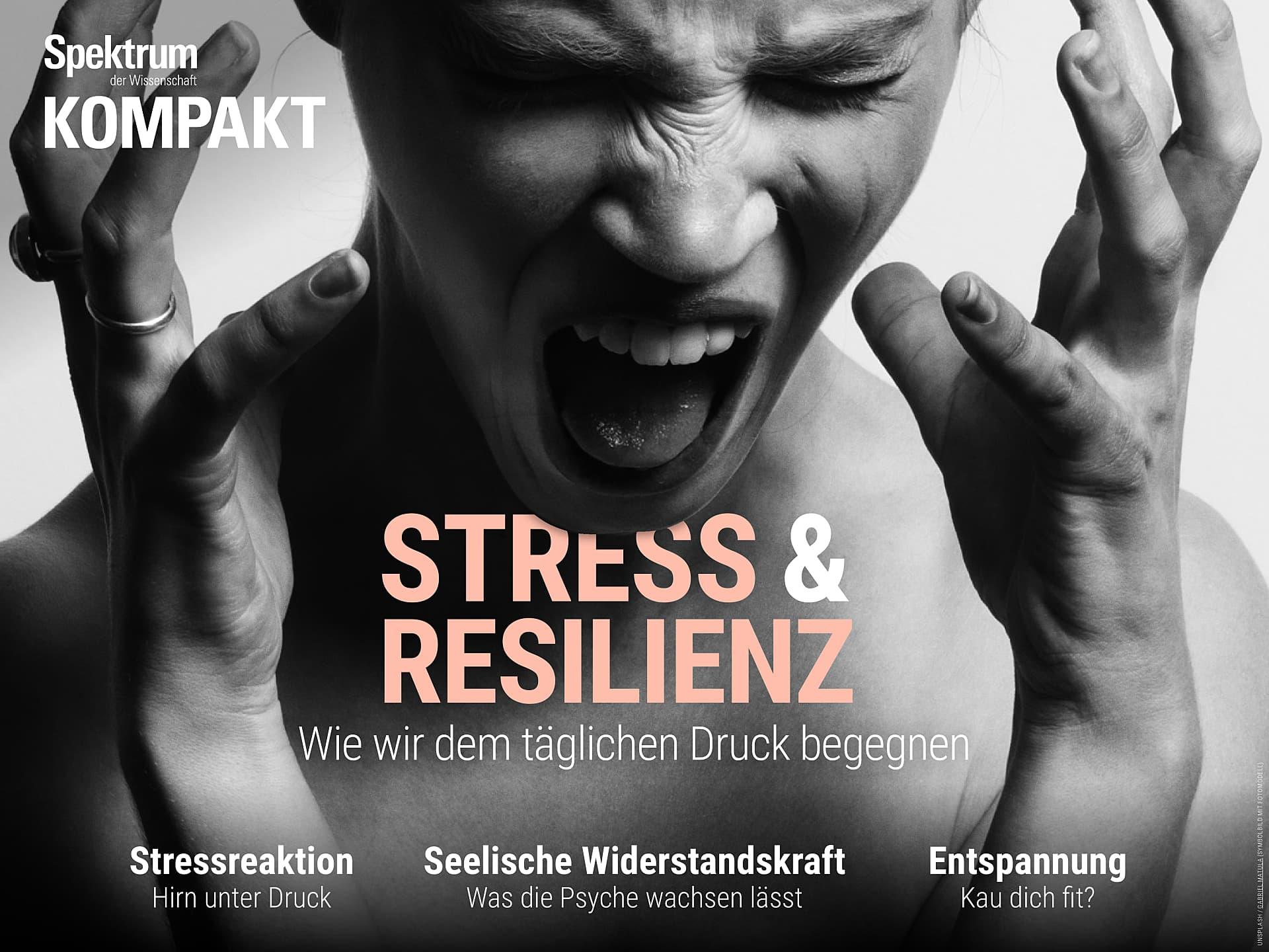 Stress und Resilienz - Wie wir dem täglichen Druck begegnen