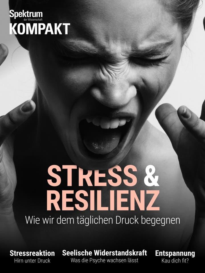 Stress und Resilienz – Wie wir dem täglichen Druck begegnen