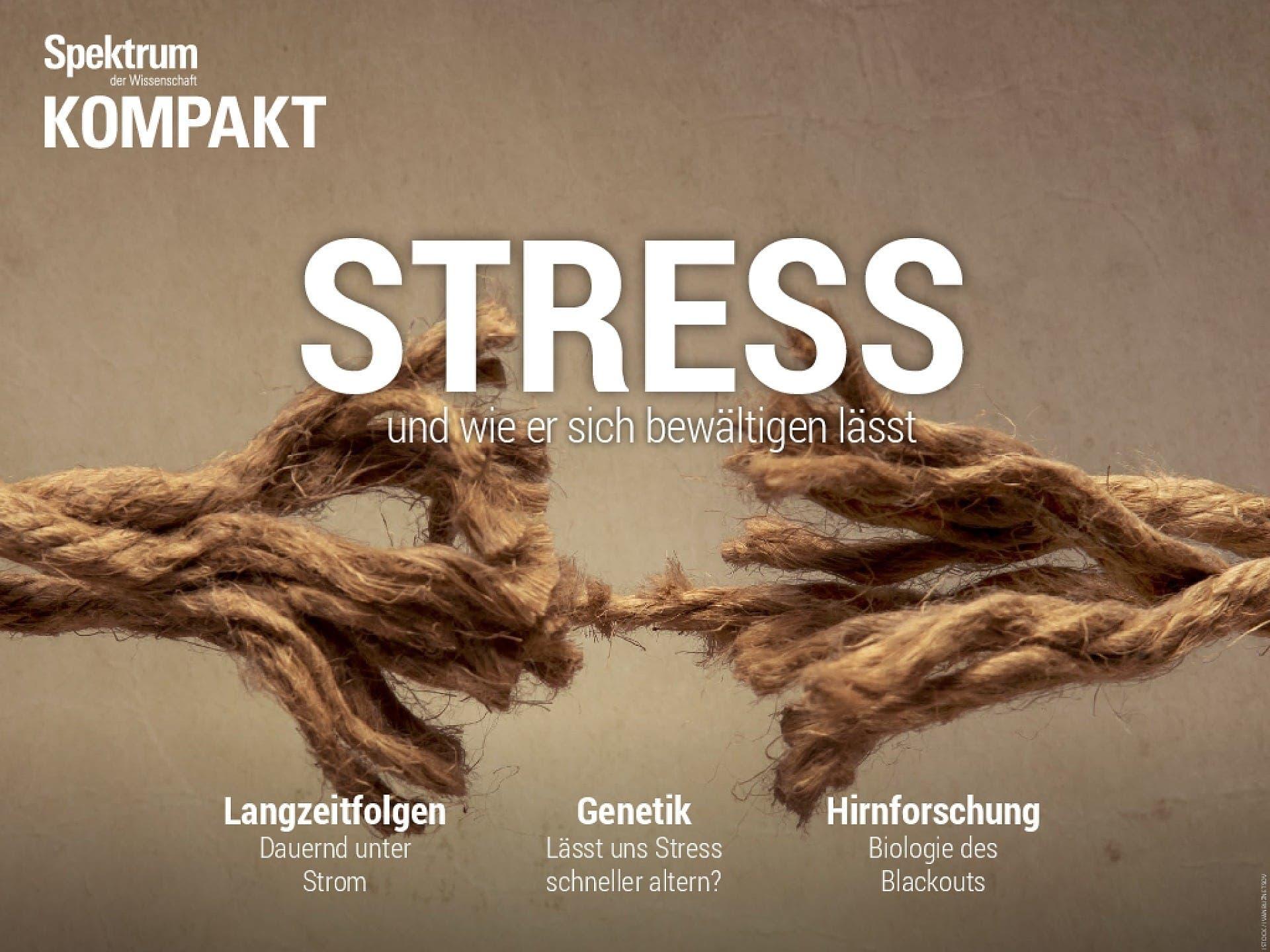 Stress - und wie er sich bewältigen lässt