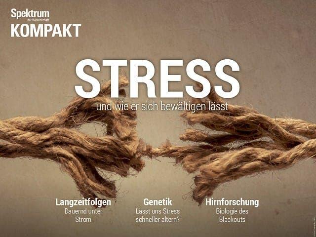 Spektrum Kompakt:  Stress – und wie er sich bewältigen lässt