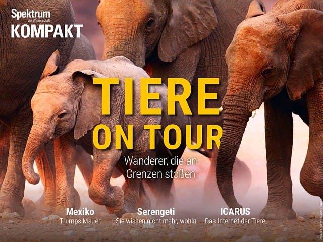 Spektrum Kompakt:  Tiere on Tour – Wanderer, die an Grenzen stoßen