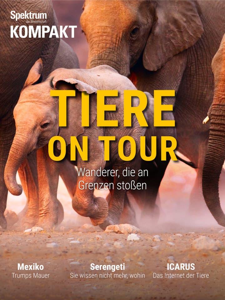 Tiere on Tour - Wanderer, die an Grenzen stoßen