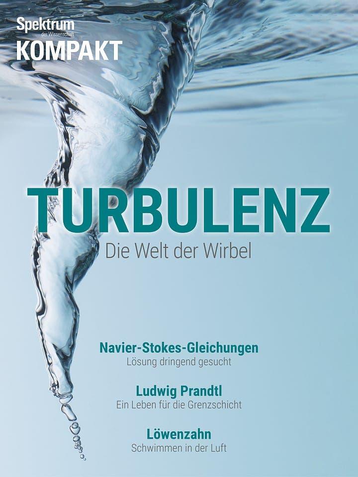 Spektrum Kompakt:  Turbulenz – Die Welt der Wirbel