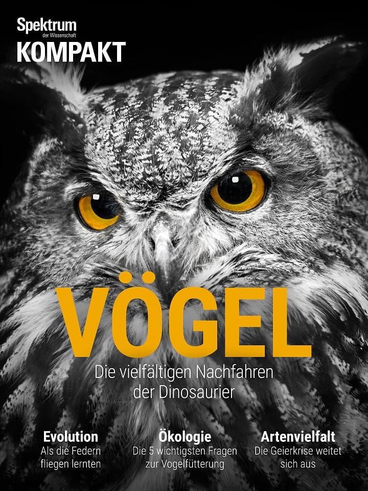 Spektrum Kompakt:  Vögel – Die vielfältigen Nachfahren der Dinosaurier