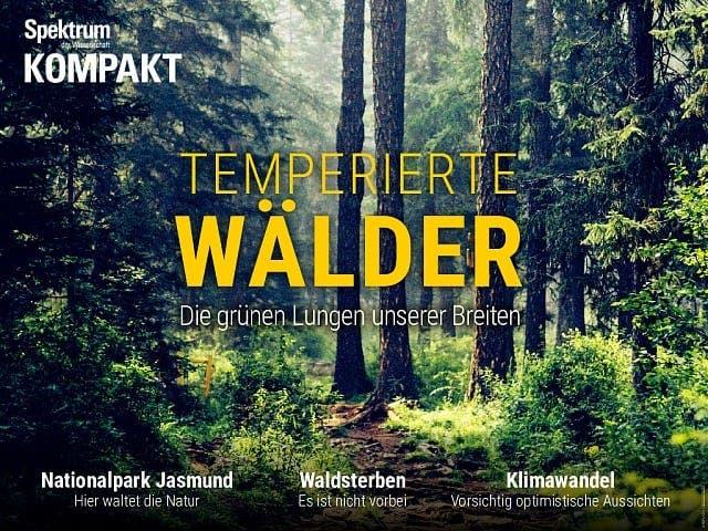Spektrum Kompakt:  Temperierte Wälder – Die grünen Lungen unserer Breiten