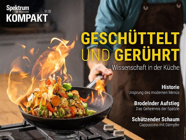 Spektrum Kompakt:  Geschüttelt und gerührt – Wissenschaft in der Küche