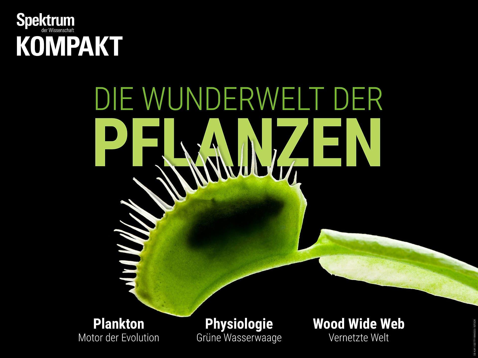 Die Wunderwelt der Pflanzen