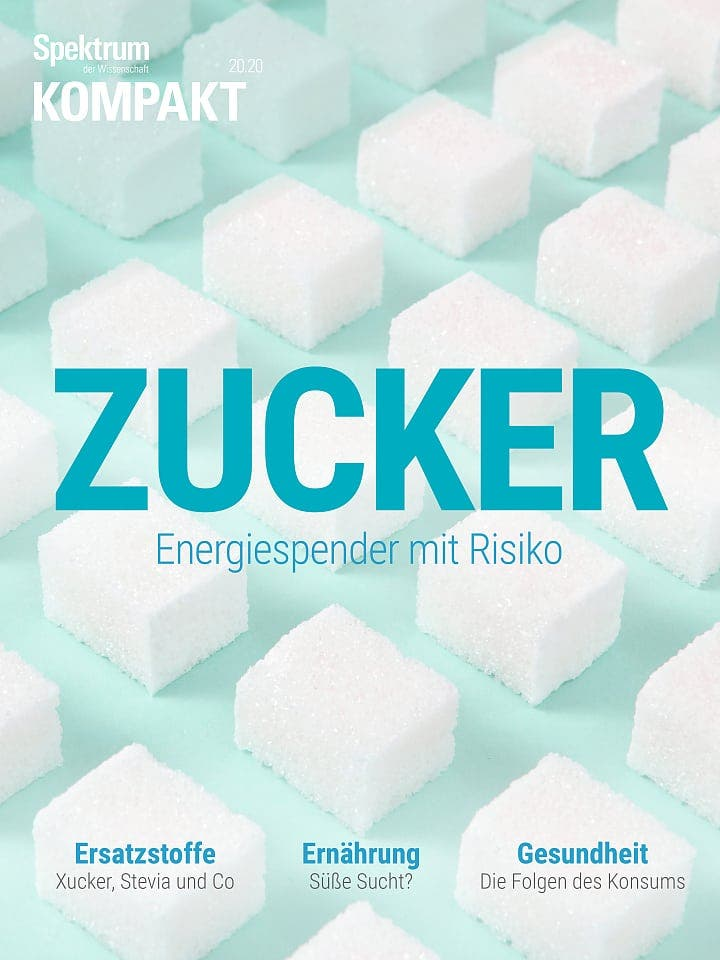 Spektrum Kompakt:  Zucker – Energiespender mit Risiko