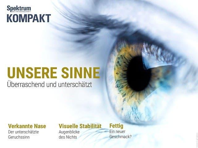 Spektrum Kompakt:  Unsere Sinne – überraschend und unterschätzt